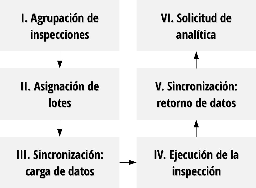 Proceso de inspección