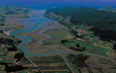 Inspeccions ambientals o a llocs del medi