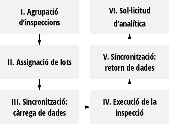 Procés d'inspecció